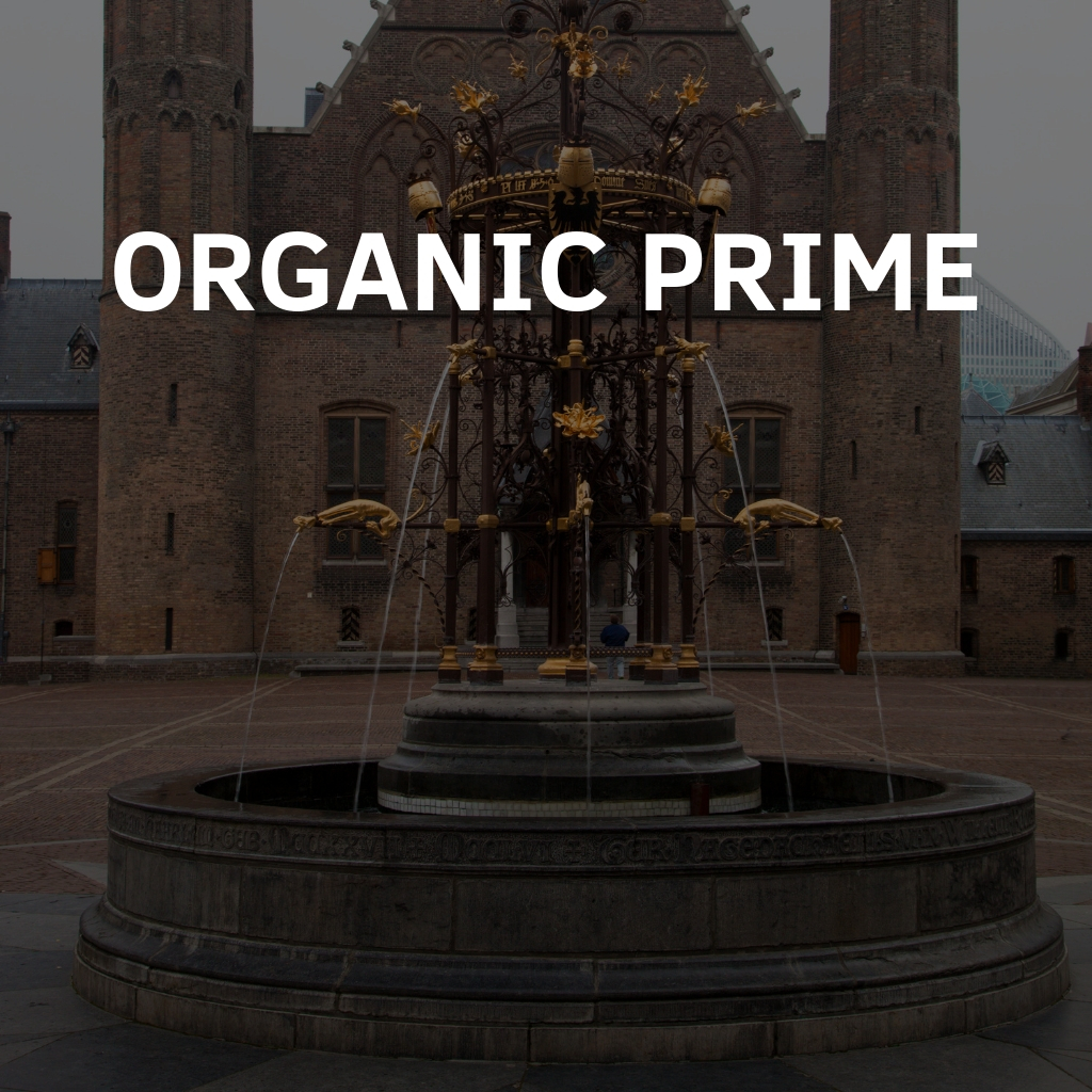 Organic SEO Services Prime Package By Digital Carnage