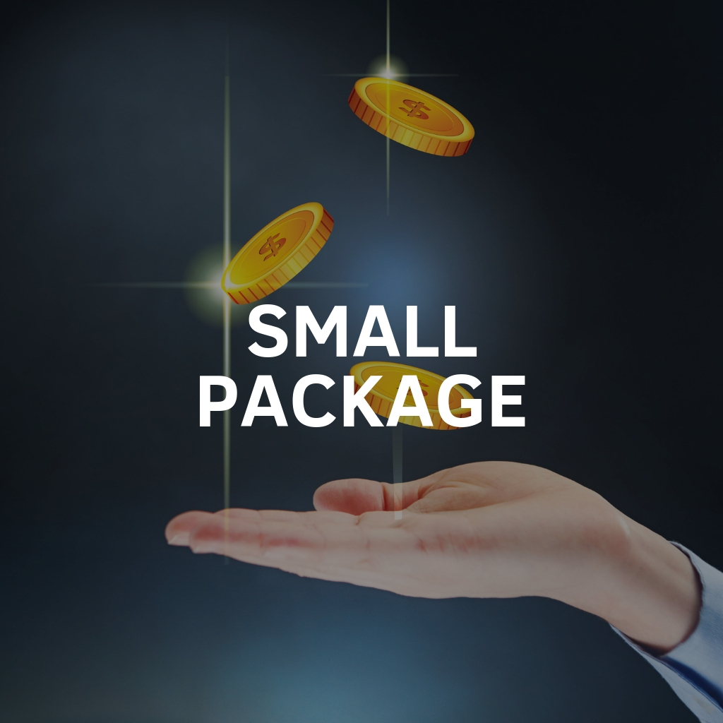 Paid Advertising Small Package Service By Digital Carnage